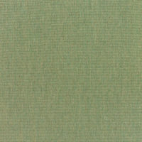 Canvas Fern (5487-0000)