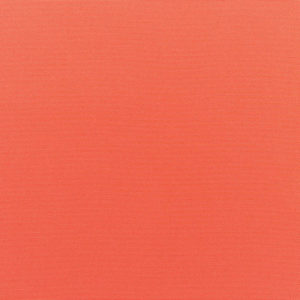 Pantone 2019 Color of the Year living coral