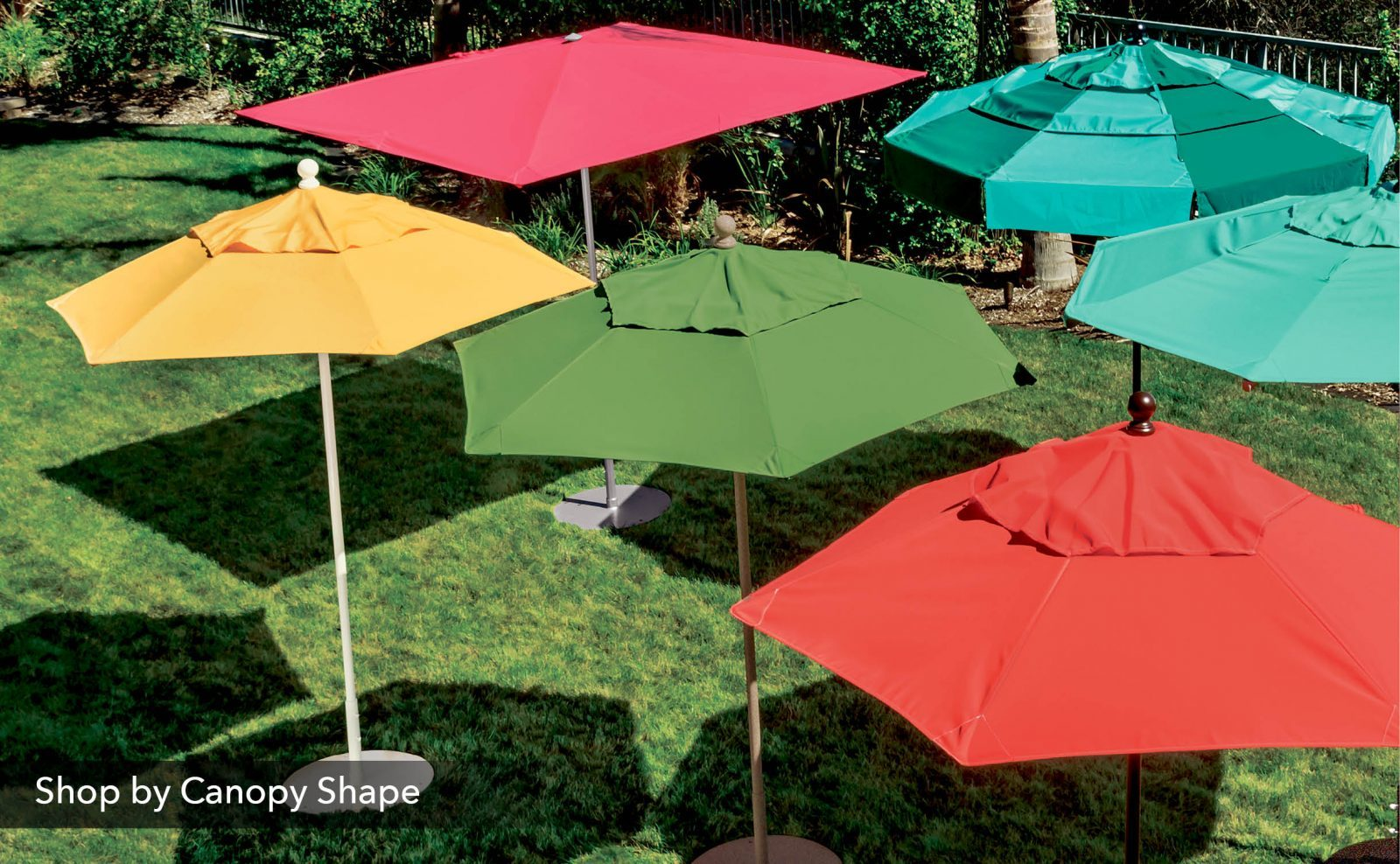 Shop by Canopy Shape
